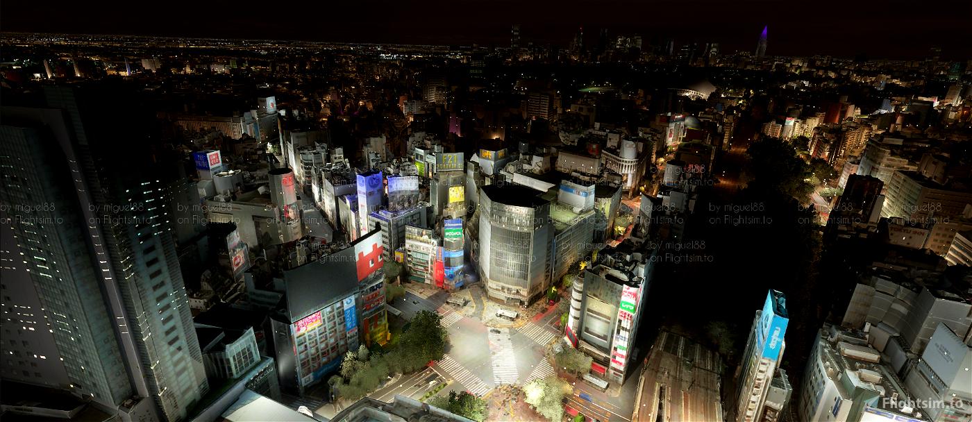 Tokyo Yokohama Nightlights Flight Simulator 2020