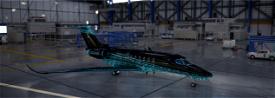 Cessna longitude Artic Camo Image Flight Simulator 2020