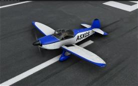 Robin CAP 10c - Simple (7 colors) Image Flight Simulator 2020