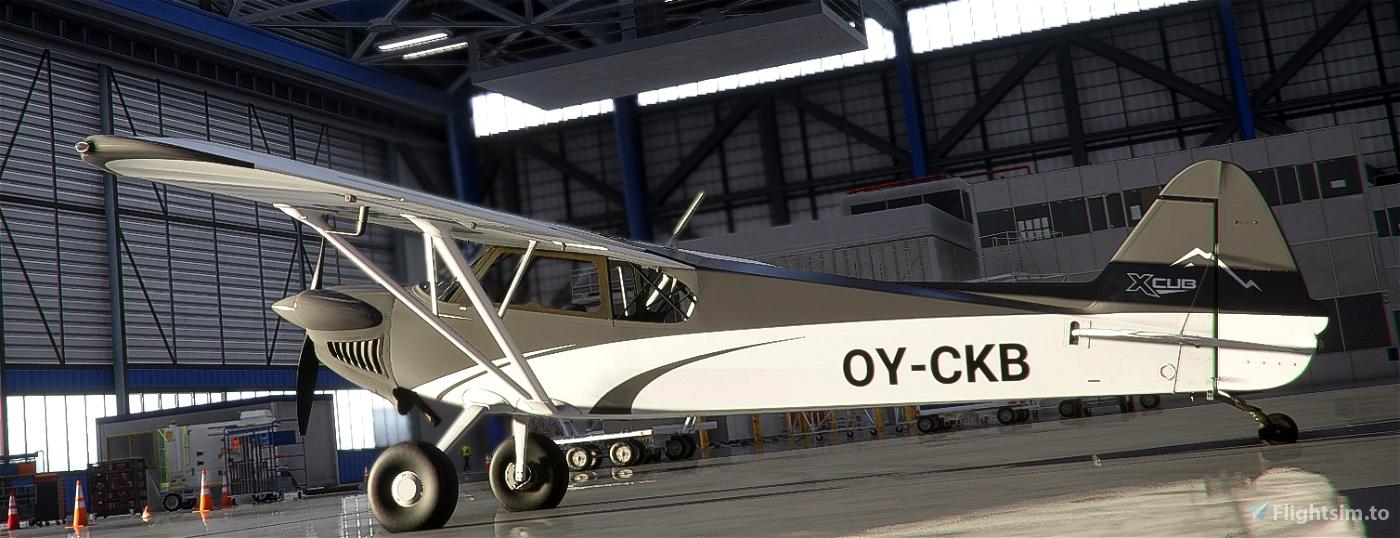 Xcub BlackWhite Flight Simulator 2020