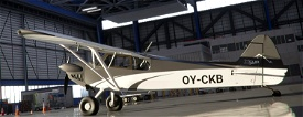 Xcub BlackWhite Image Flight Simulator 2020