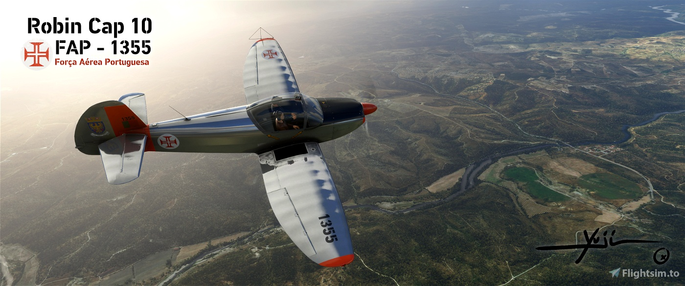 Cap10 FAP-1355