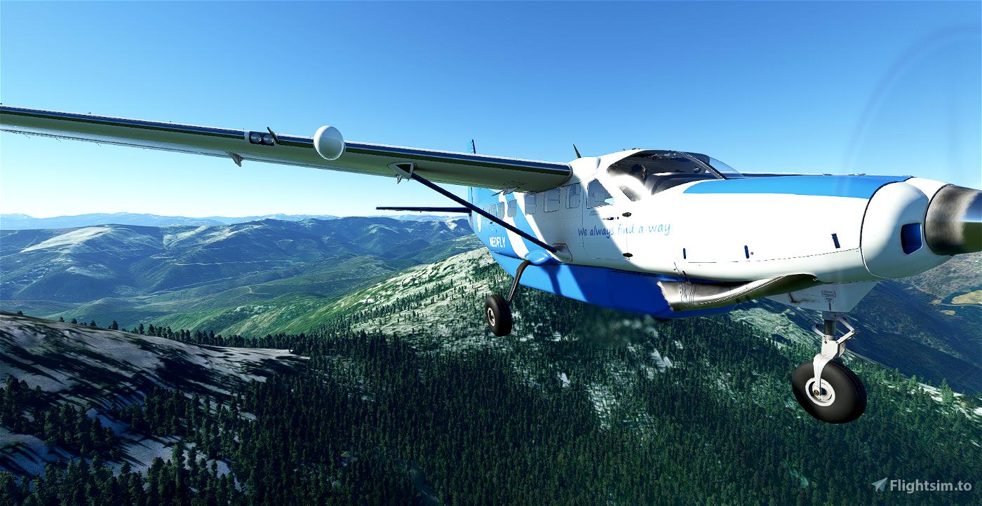 C208B Neofly