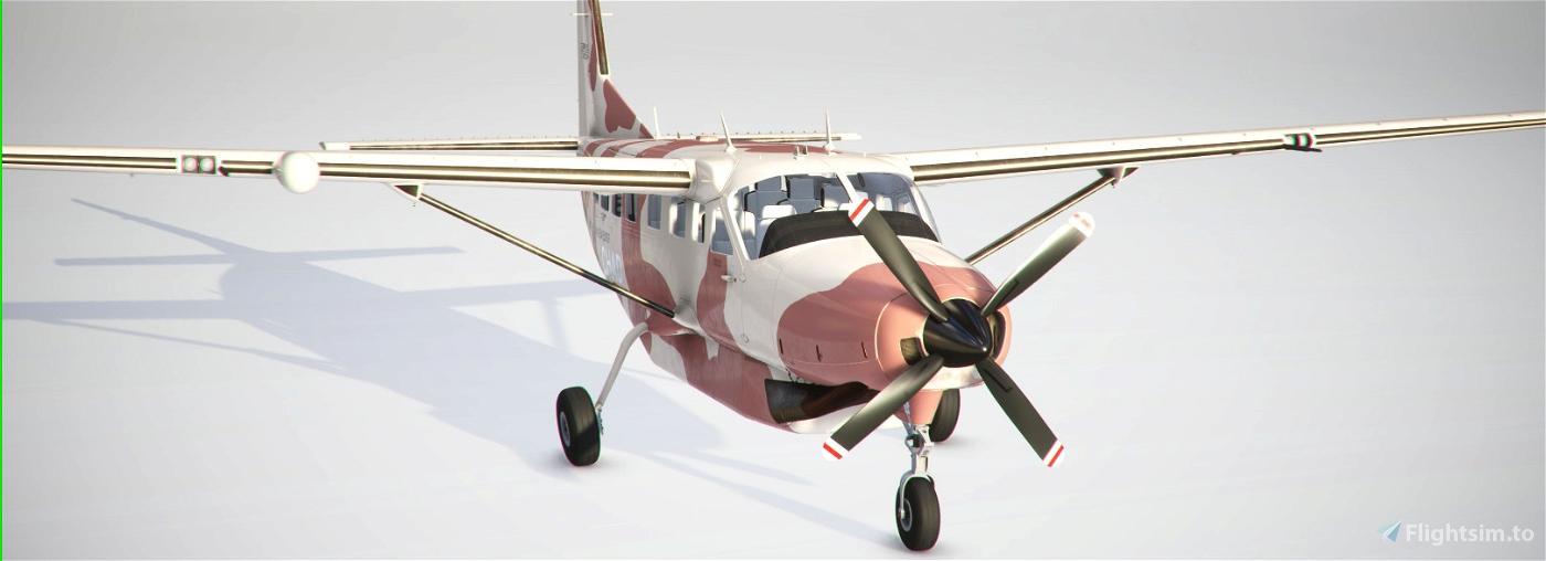 Chadian Air Force Cessna 208 B Flight Simulator 2020