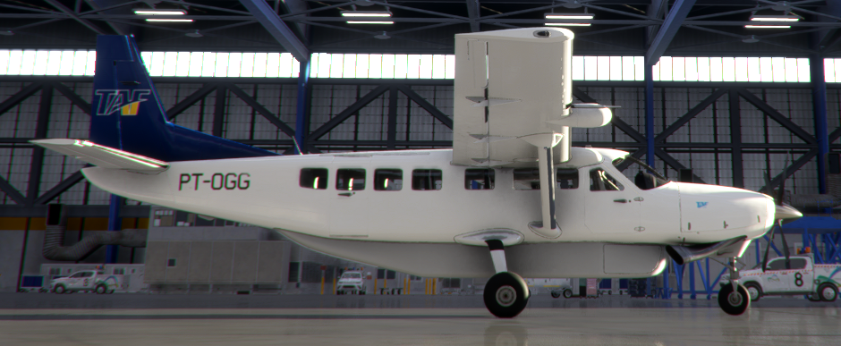 PT-OGG TAF C208B  Flight Simulator 2020