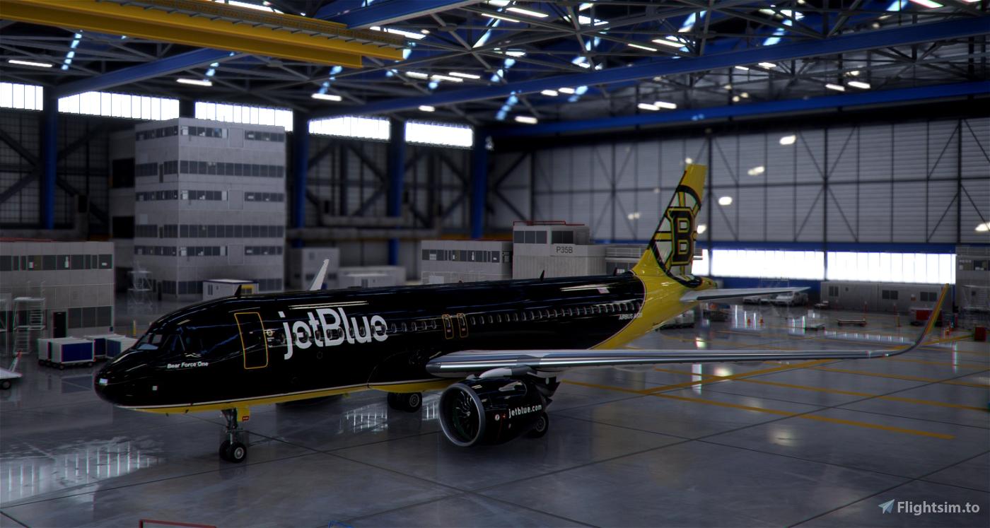 Boston Bruins Flight Simulator 2020