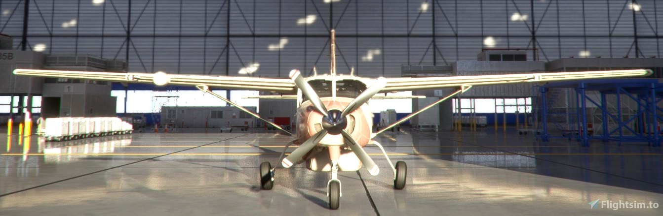 Chadian Air Force Cessna 208 B