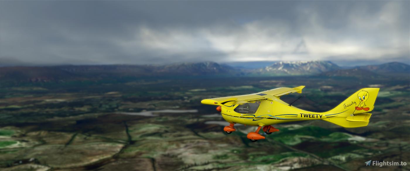 Flight Design CTSL Tweety