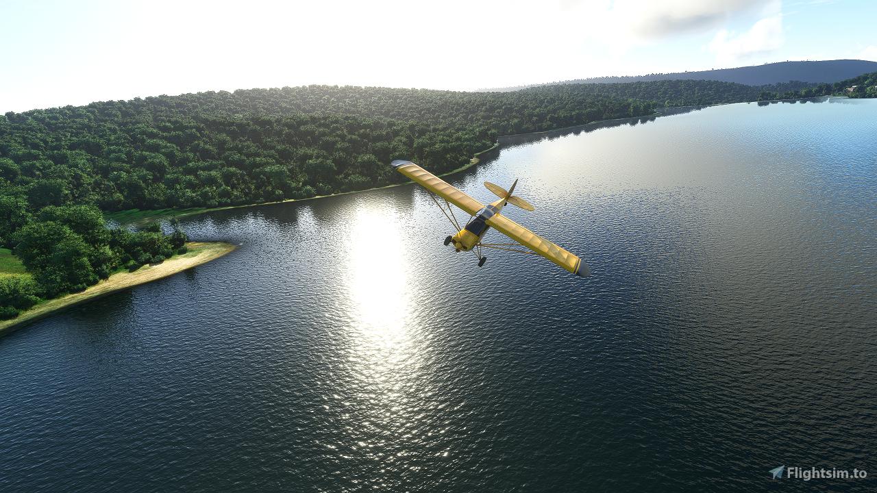 Black Forest Bush Trip Flight Simulator 2020