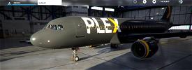 Plex A320 Custom Livery  Image Flight Simulator 2020