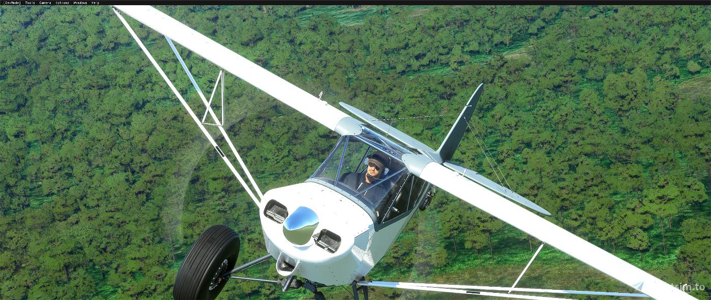 Savage Carbon - STOL Realism Mod Flight Simulator 2020