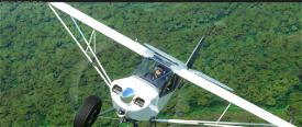 Savage Carbon - STOL Realism Mod Image Flight Simulator 2020