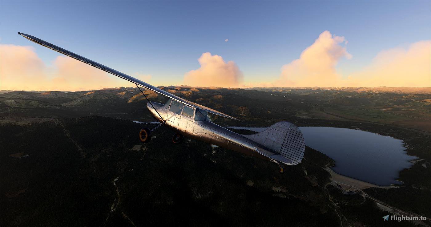 L-19 Bird Dog Bare Bird Livery Flight Simulator 2020