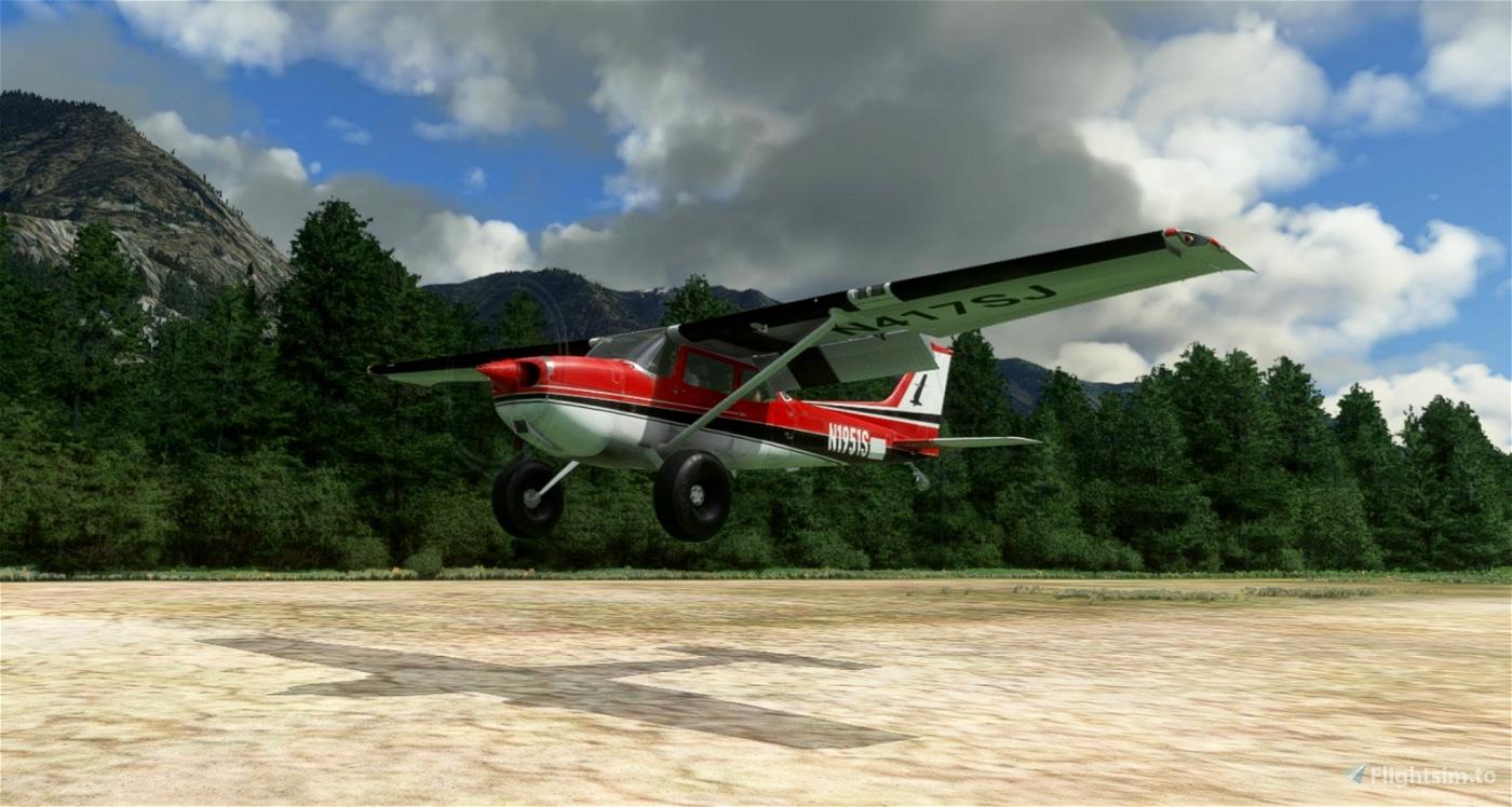 C172 Taildragger N1951S